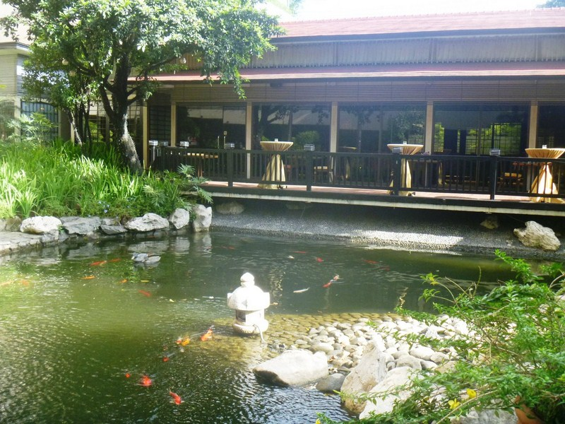 New year at the dusit thani manila b l a s t live for Koi pool garden centre