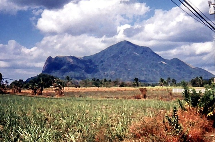 Mt. Makulot, Batangas' highest mountain.  The campsite is on the mountain's shoulder on the left