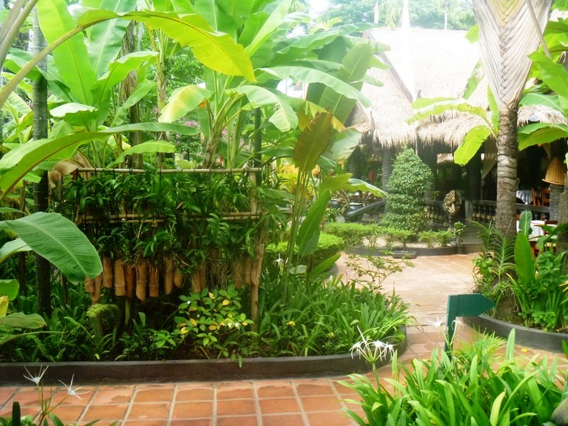 Tropical garden within hotel grounds