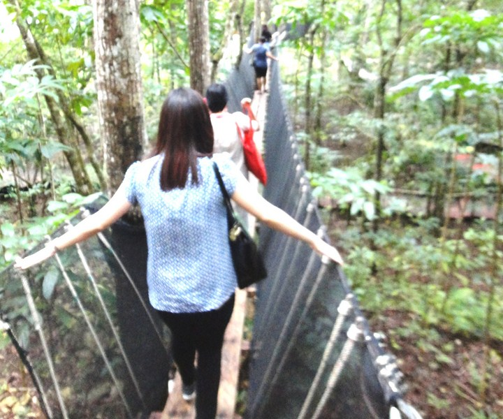 Crossing a hanging bridge