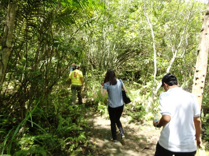 Hiking along the Tarsier Trail