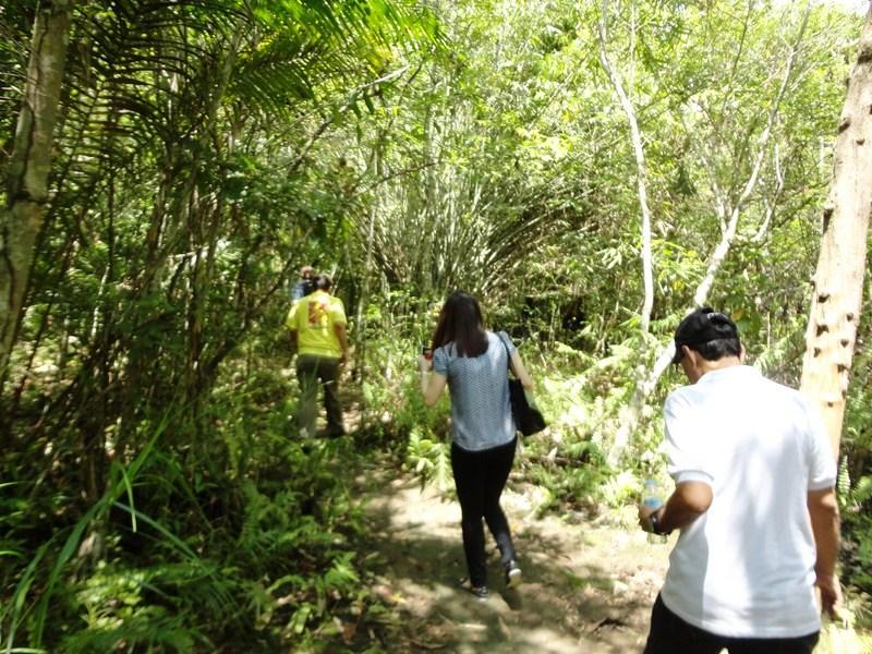 Hiking along the Tarsier Trail