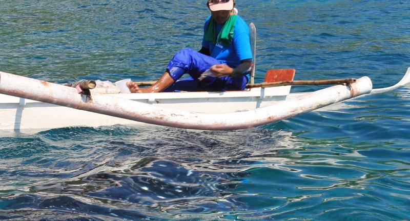 Fisherman feeding a whale shark