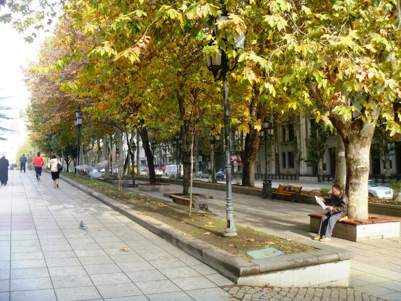 Oriental plane trees lining the sidewalks