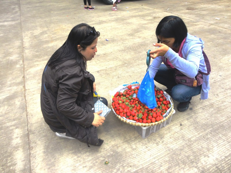 Melissa buying strawberries from a vendor