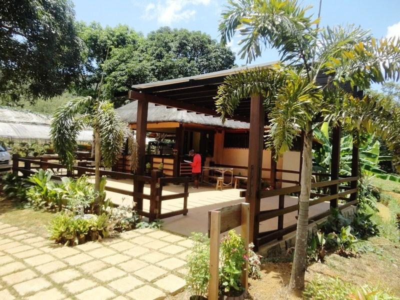 Organic Farm (6)