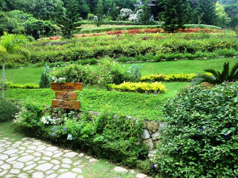Terrazas De Flores Botanical Garden Cebu City Cebu